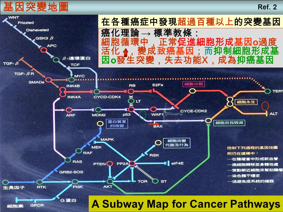 A Subway Map for Cancer Pathways
