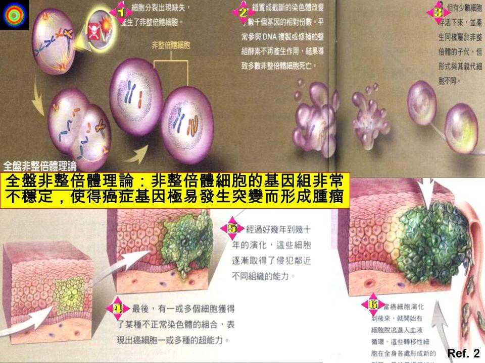 全盤非整倍體理論:非整倍體細胞的基因組非常不穩定,使得癌症基因極易發生突變而形成腫瘤