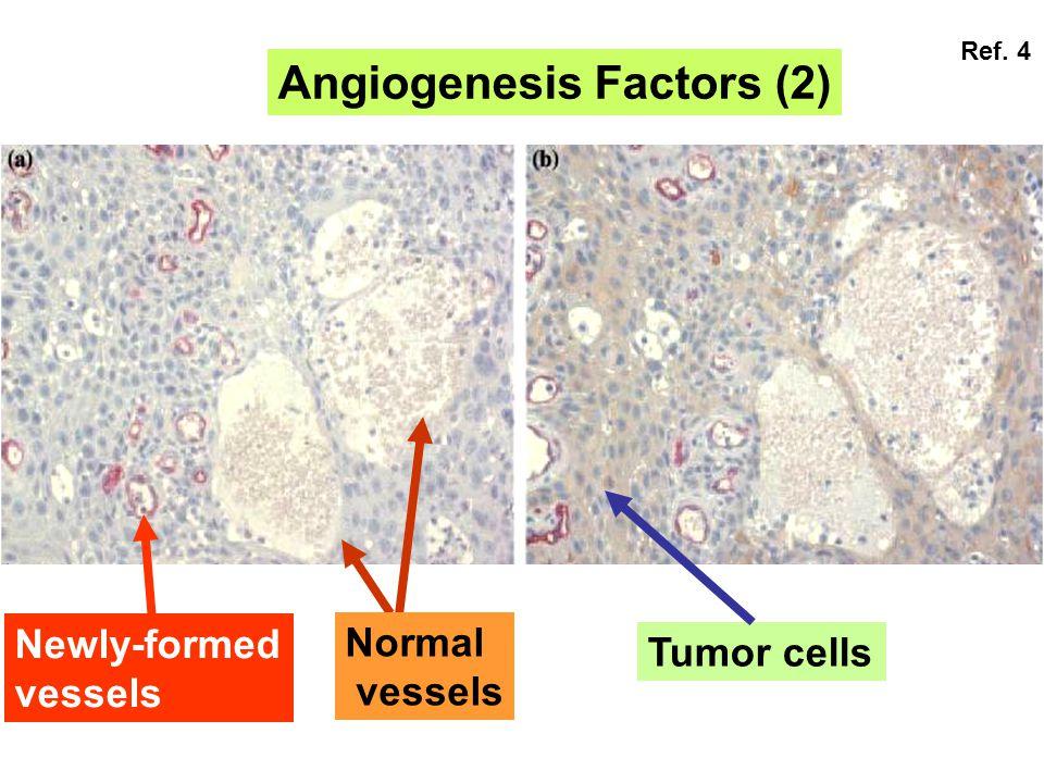 Angiogenesis Factors (2)
