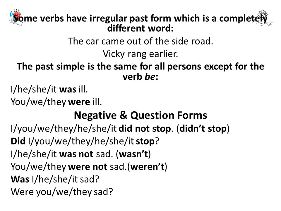 Negative & Question Forms