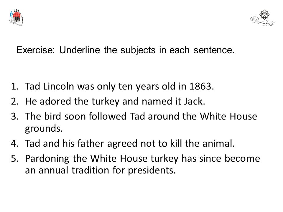 Exercise: Underline the subjects in each sentence.