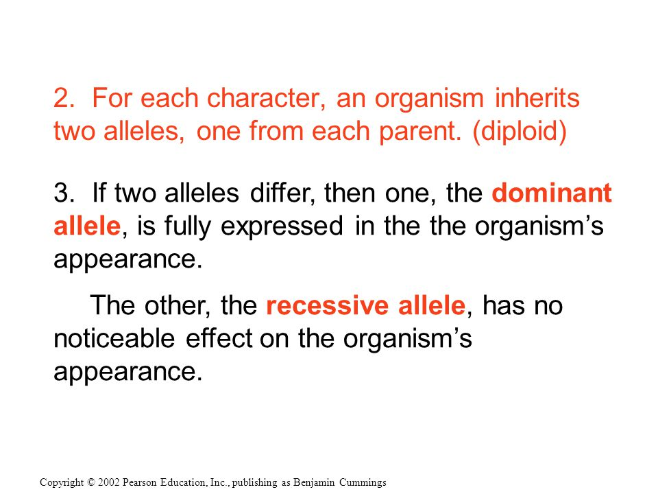2. For each character, an organism inherits two alleles, one from each parent. (diploid)