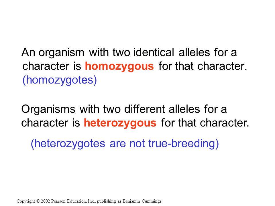 (heterozygotes are not true-breeding)