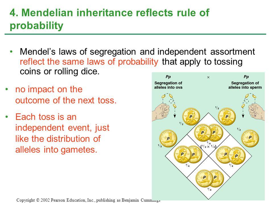 4. Mendelian inheritance reflects rule of probability