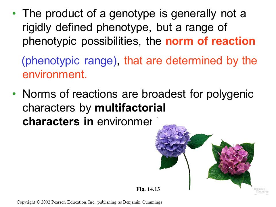 (phenotypic range), that are determined by the environment.