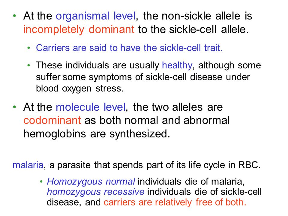 At the organismal level, the non-sickle allele is incompletely dominant to the sickle-cell allele.