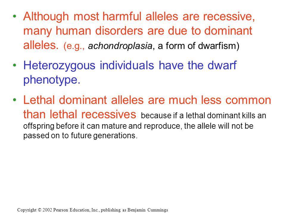 Heterozygous individuals have the dwarf phenotype.