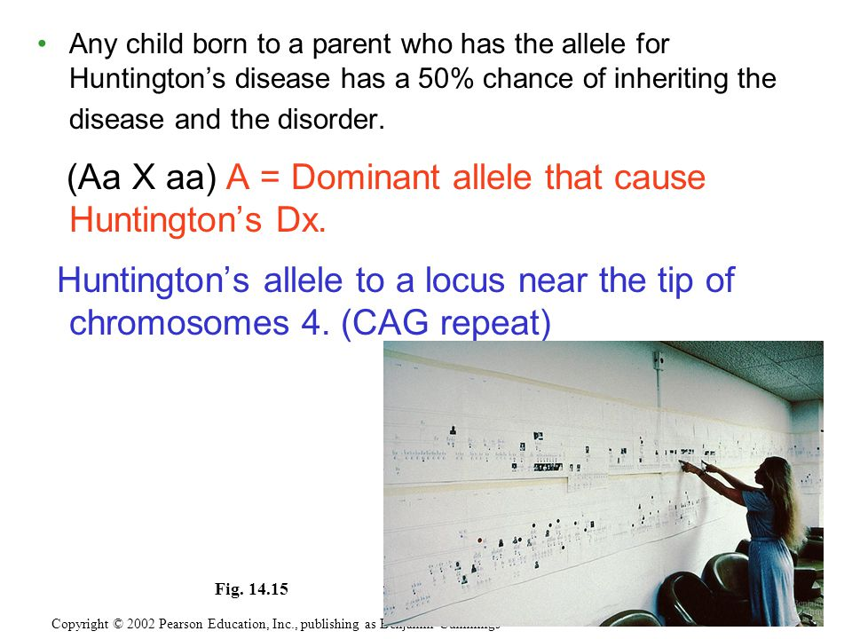 (Aa X aa) A = Dominant allele that cause Huntington's Dx.
