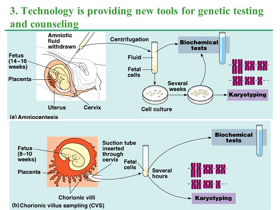3. Technology is providing new tools for genetic testing and counseling