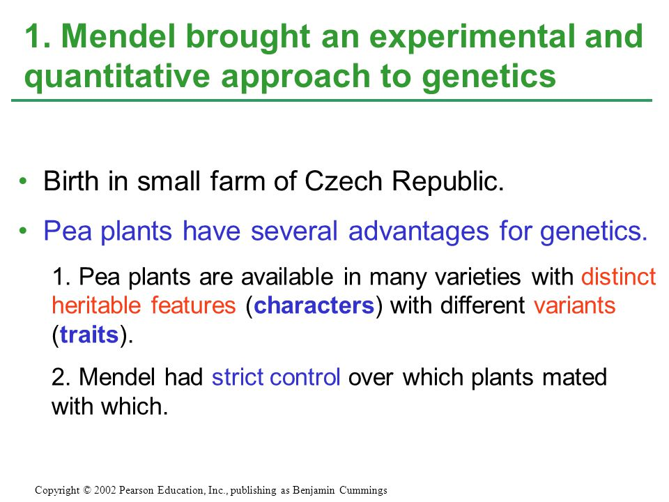 1. Mendel brought an experimental and quantitative approach to genetics