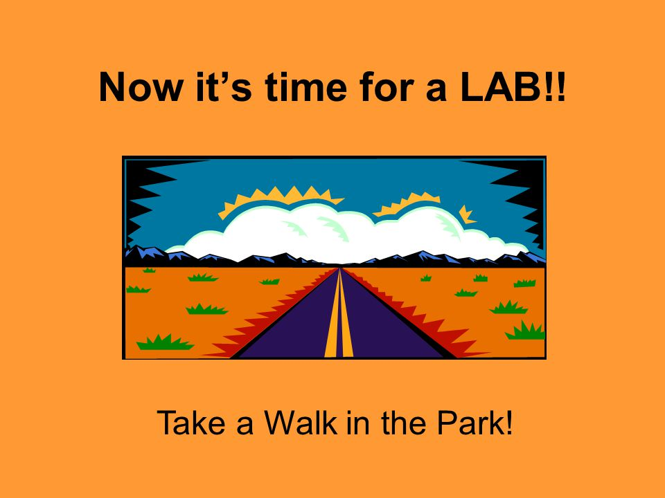 Now it's time for a LAB!! Take a Walk in the Park!