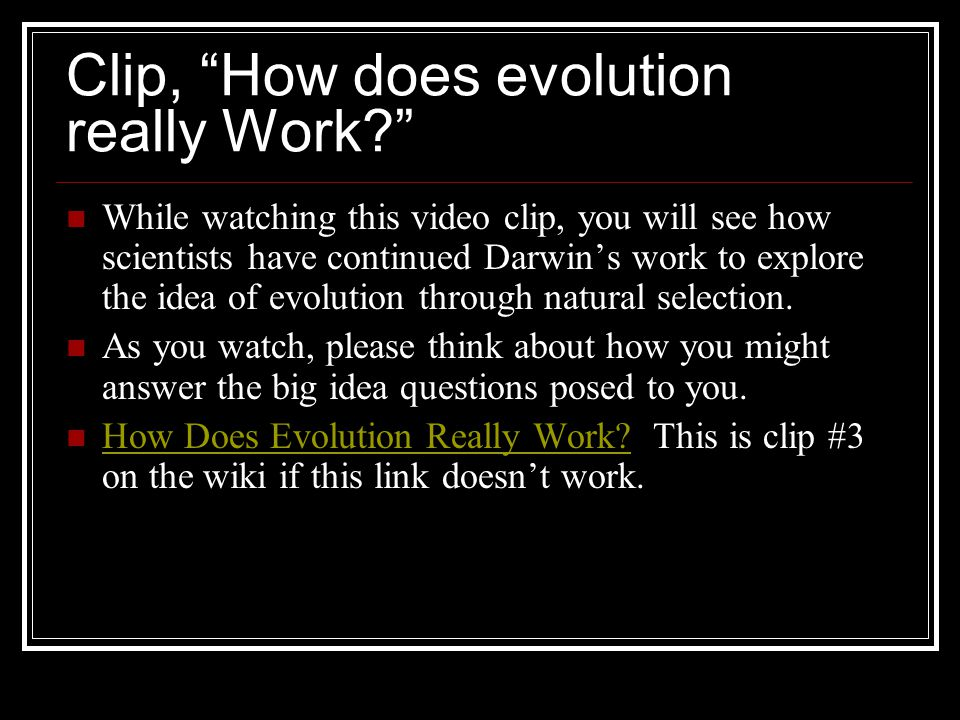 Clip, How does evolution really Work