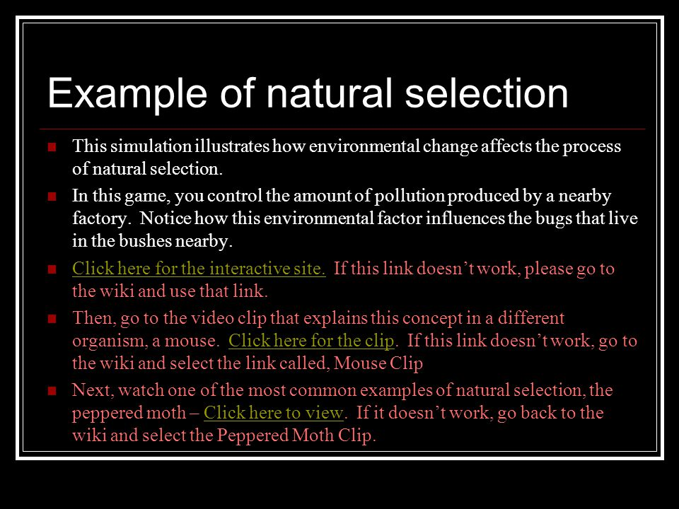 Example of natural selection