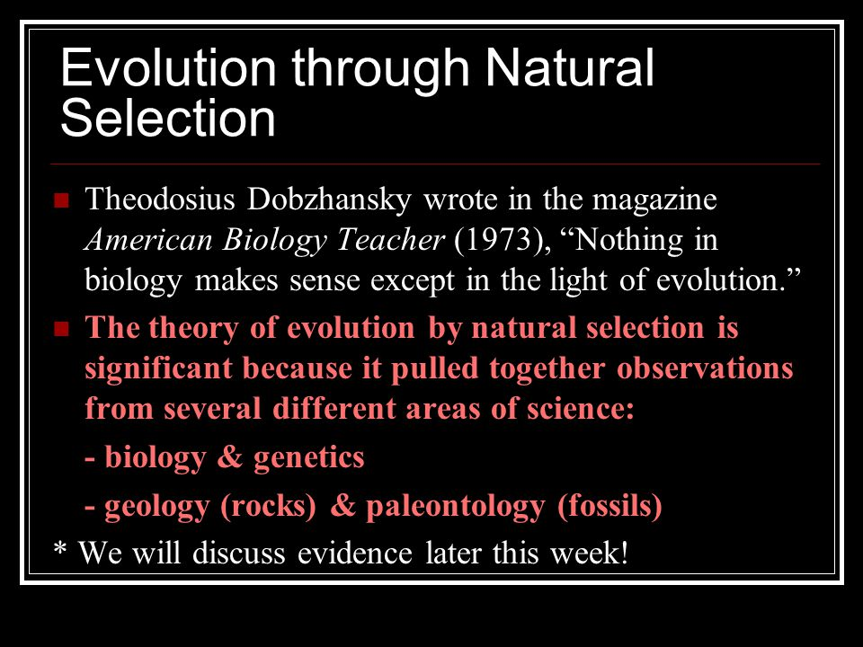 Evolution through Natural Selection