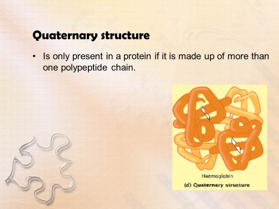 Quaternary structure Is only present in a protein if it is made up of more than one polypeptide chain.