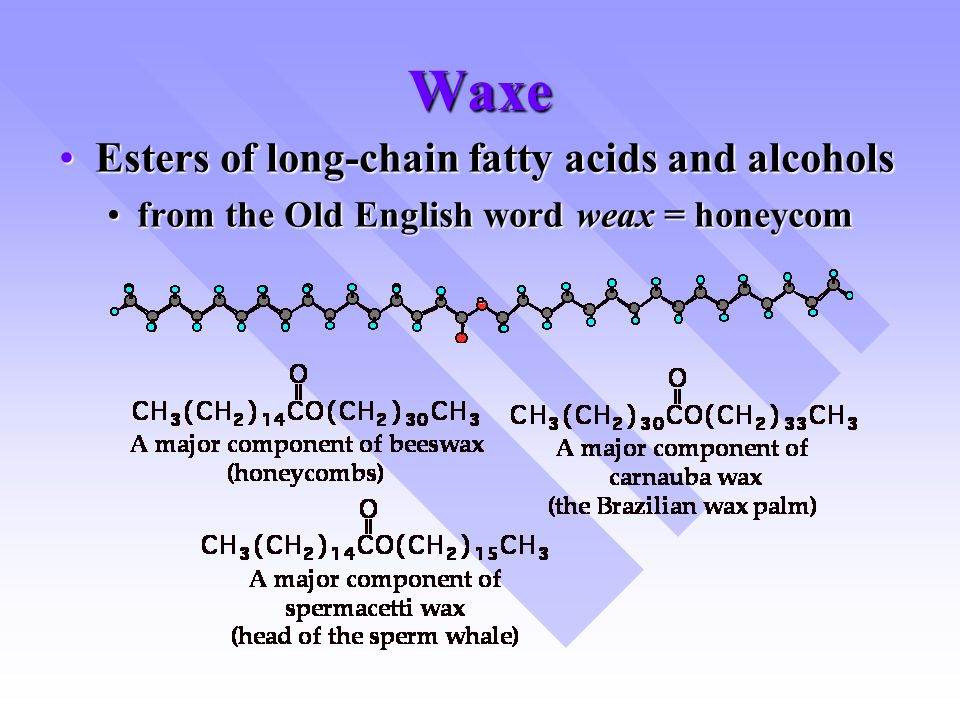 Waxe Esters of long-chain fatty acids and alcohols