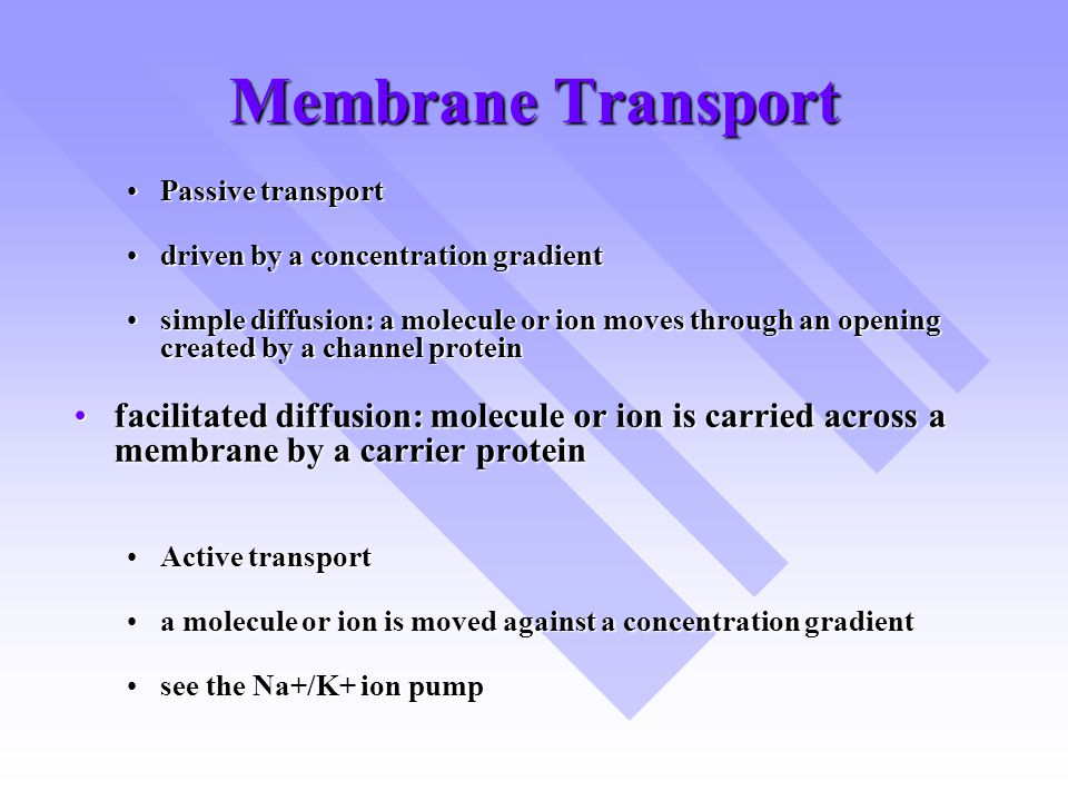 Membrane Transport Passive transport. driven by a concentration gradient.