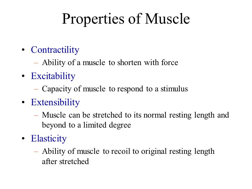 Properties of Muscle Contractility Excitability Extensibility