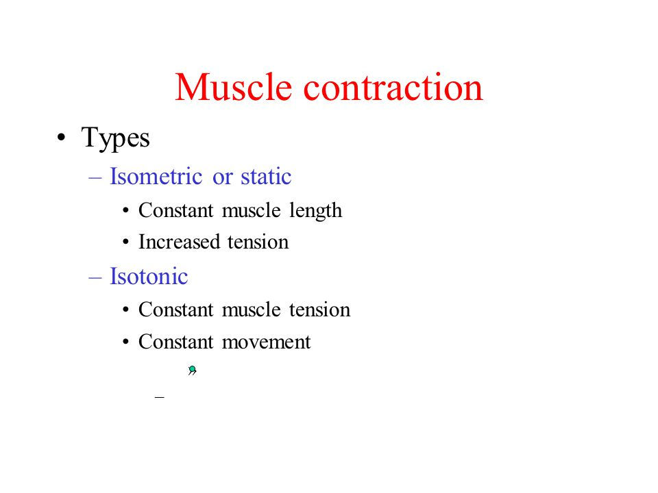Muscle contraction Types Isometric or static Isotonic