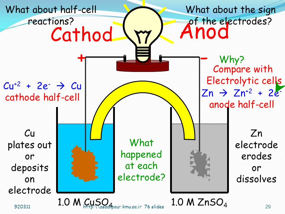 Anod - Cathod + What about half-cell reactions
