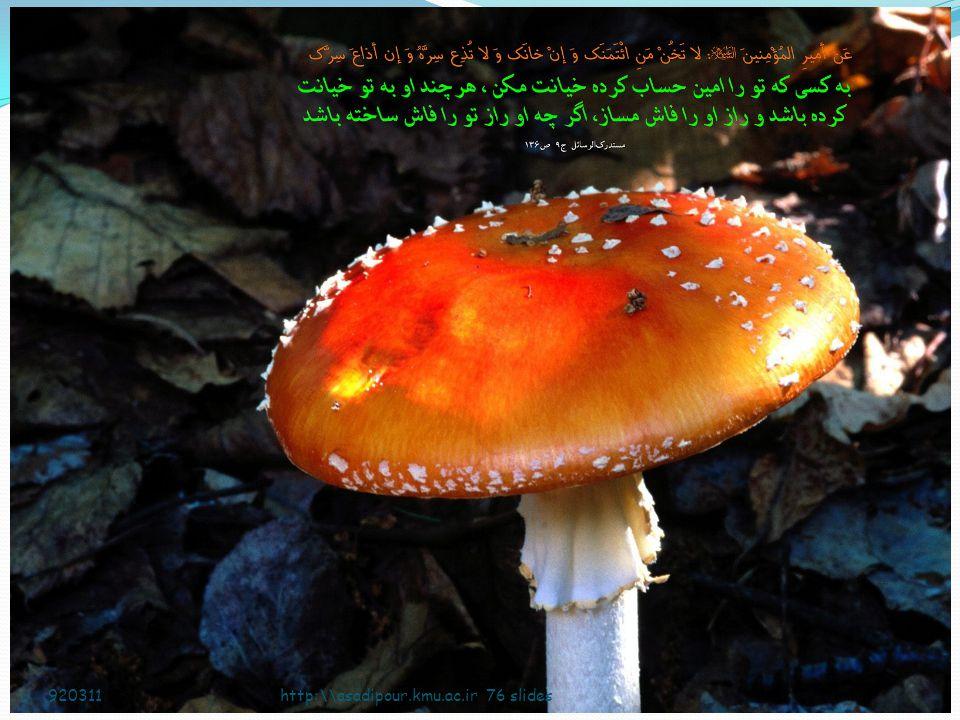 920311 http:\\asadipour.kmu.ac.ir 76 slides