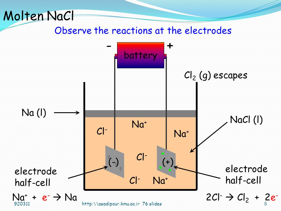 Observe the reactions at the electrodes