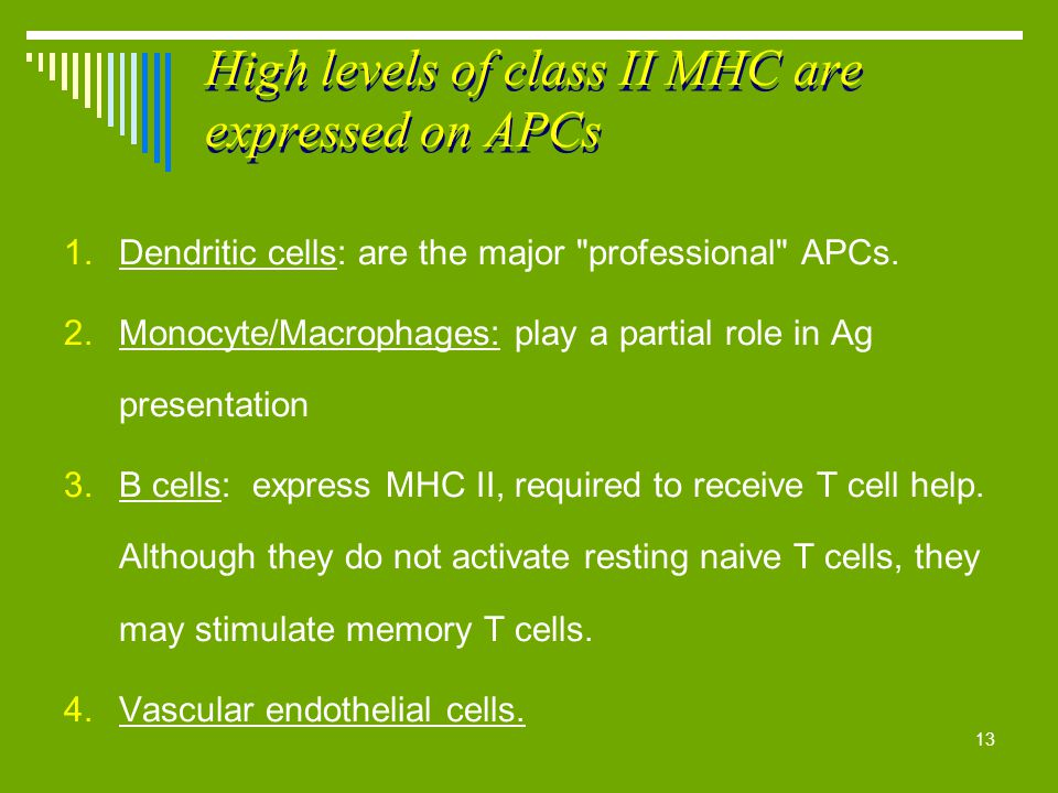 High levels of class II MHC are expressed on APCs