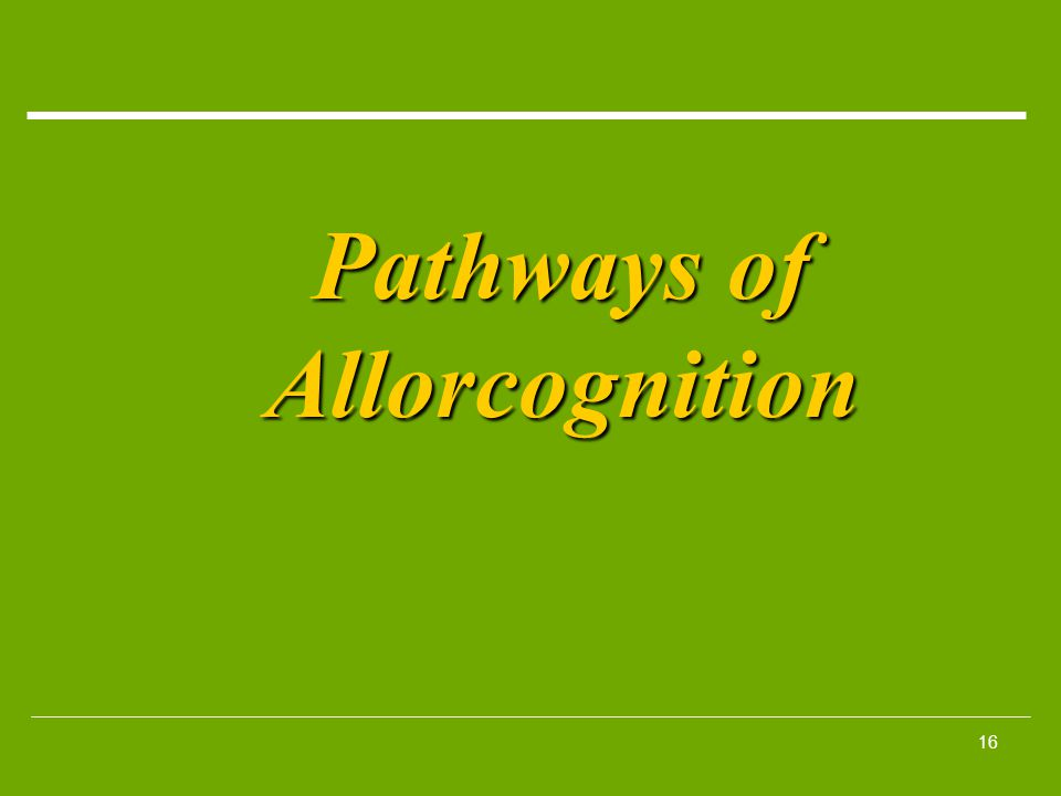 Pathways of Allorcognition