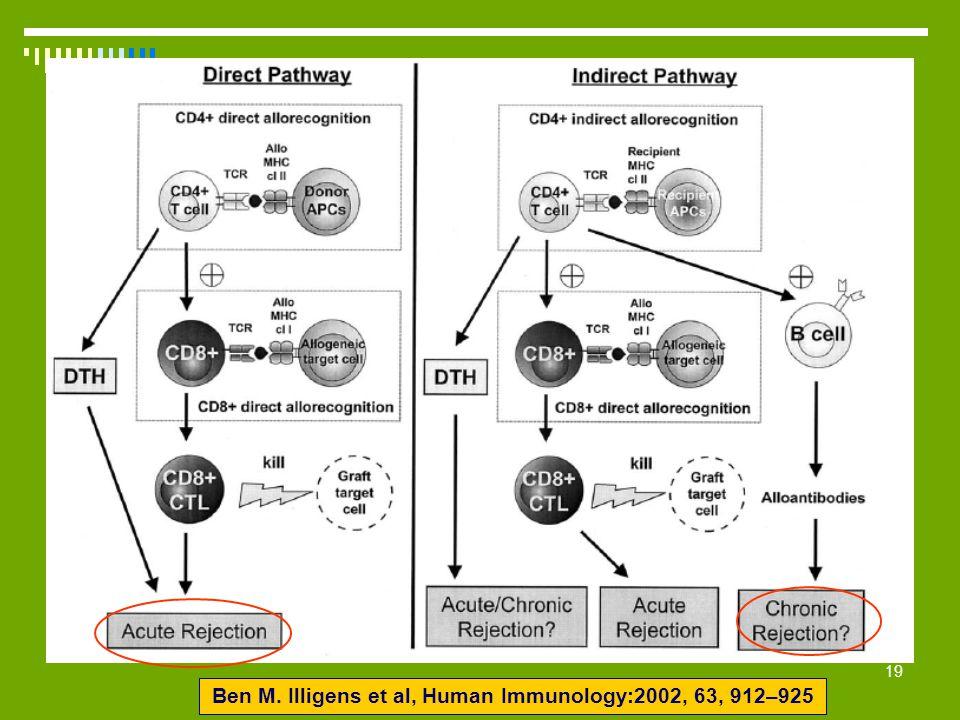 Ben M. Illigens et al, Human Immunology:2002, 63, 912–925