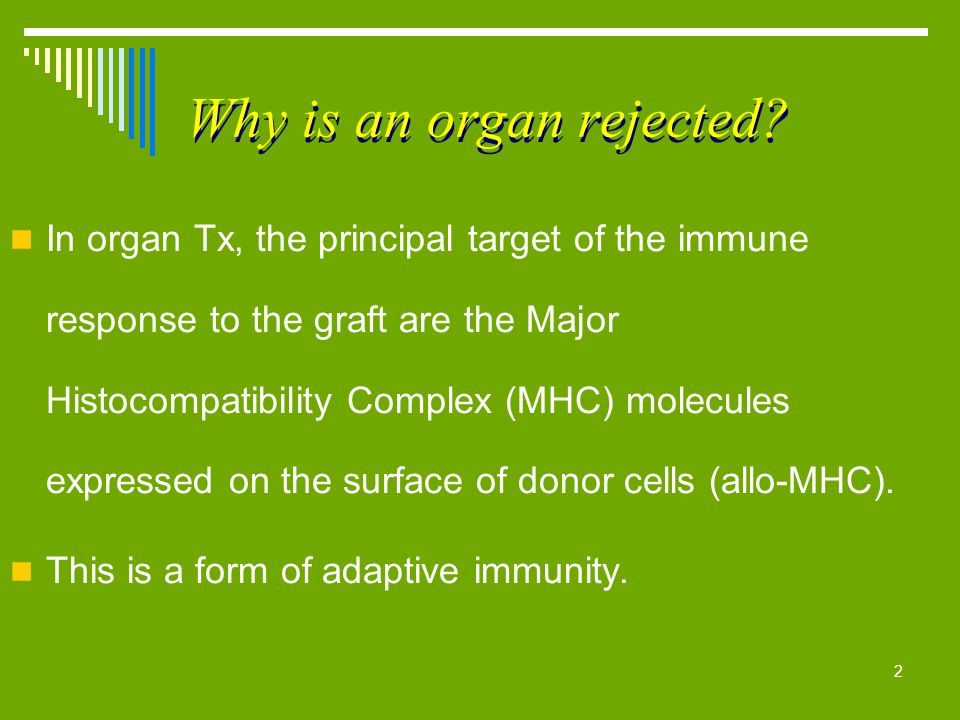 Why is an organ rejected