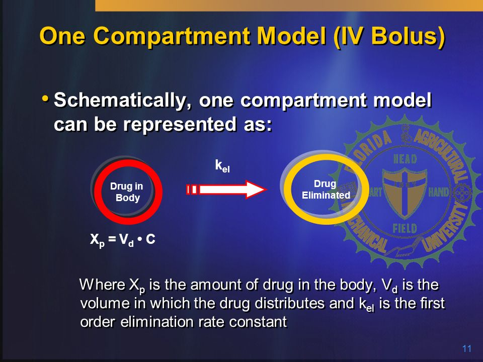 One Compartment Model (IV Bolus)