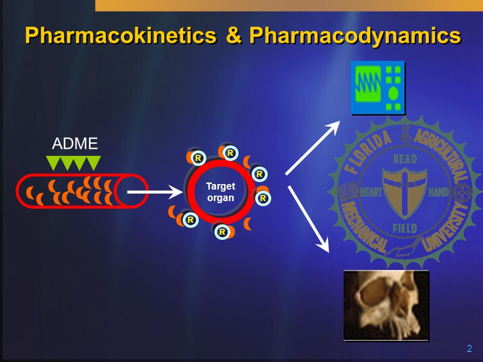 Pharmacokinetics & Pharmacodynamics