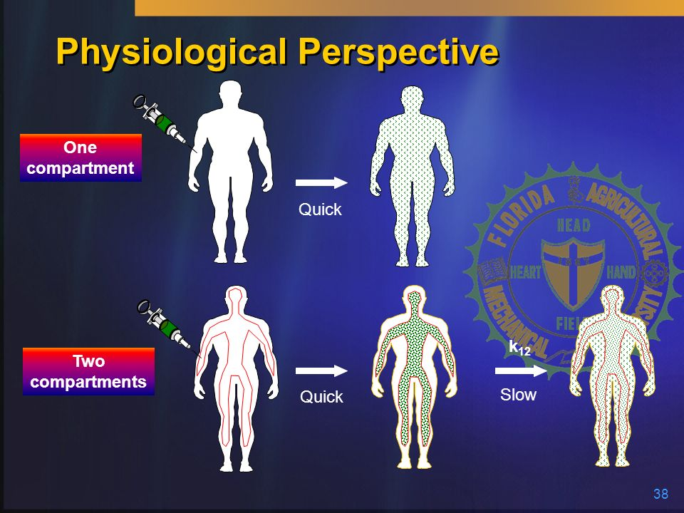 Physiological Perspective