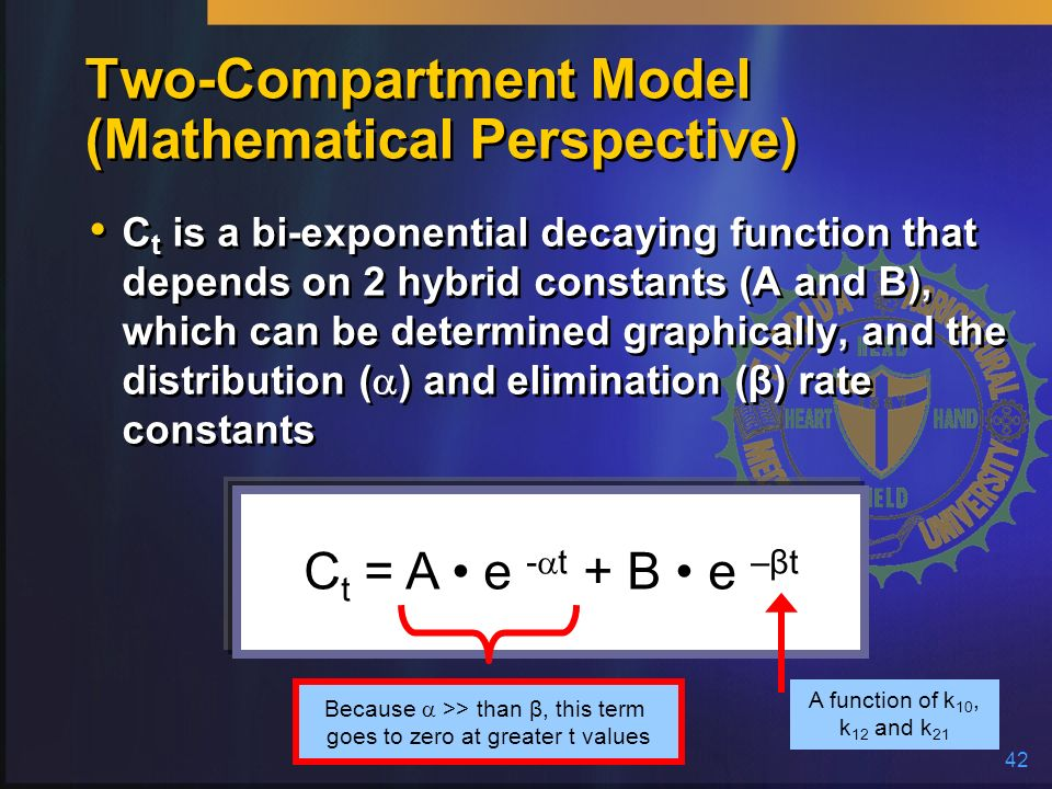 Two-Compartment Model (Mathematical Perspective)