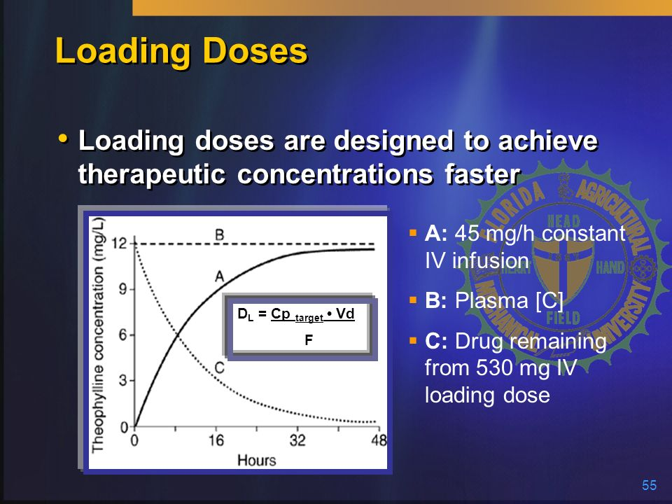 Loading Doses Loading doses are designed to achieve therapeutic concentrations faster. A: 45 mg/h constant IV infusion.