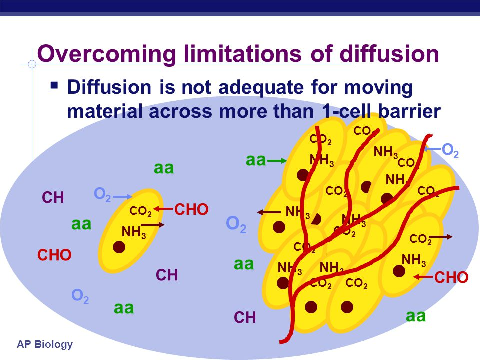 Overcoming limitations of diffusion