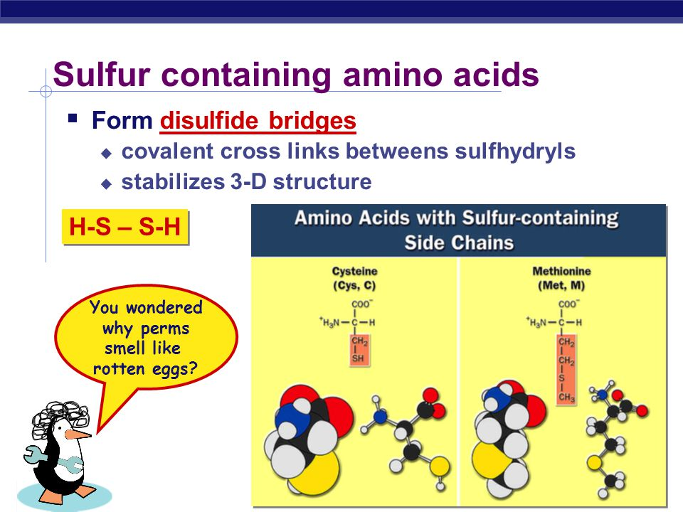 Sulfur containing amino acids