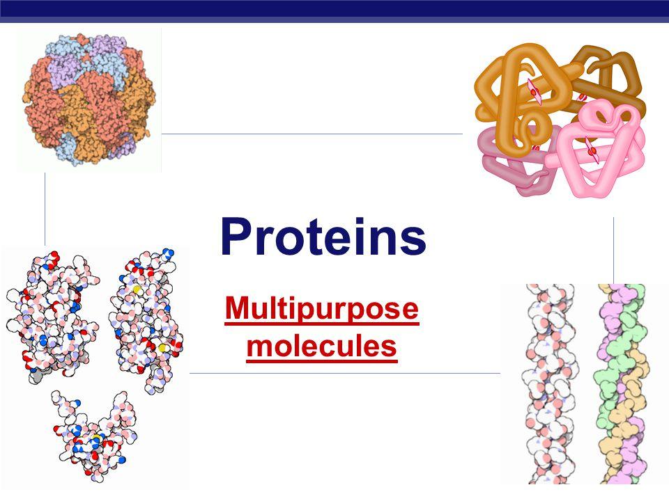 Multipurpose molecules