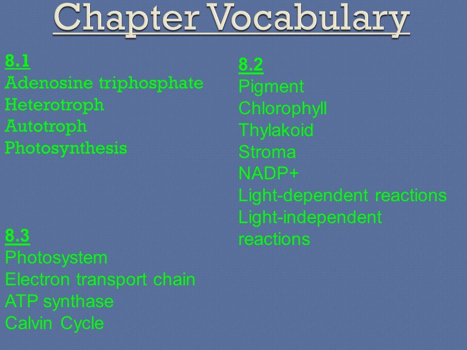 Chapter Vocabulary 8.1 8.2 Adenosine triphosphate Pigment Heterotroph