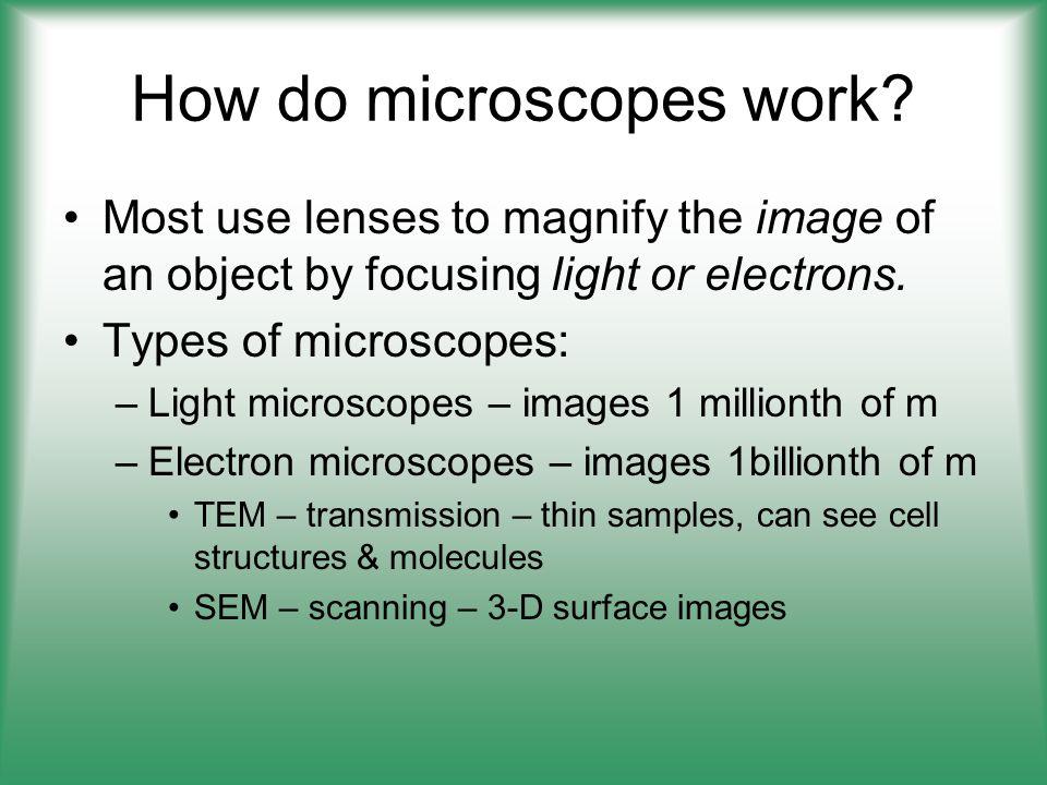 How do microscopes work