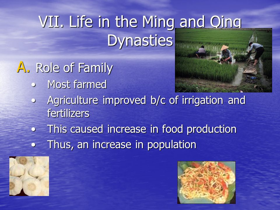 VII. Life in the Ming and Qing Dynasties