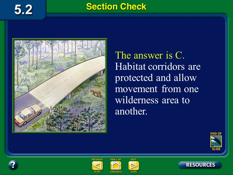 The answer is C. Habitat corridors are protected and allow movement from one wilderness area to another.