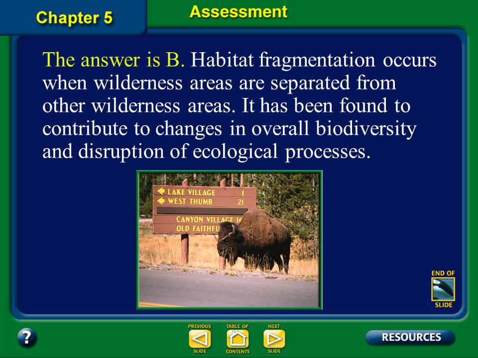 The answer is B. Habitat fragmentation occurs when wilderness areas are separated from other wilderness areas. It has been found to contribute to changes in overall biodiversity and disruption of ecological processes.
