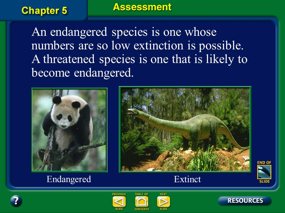 An endangered species is one whose numbers are so low extinction is possible. A threatened species is one that is likely to become endangered.