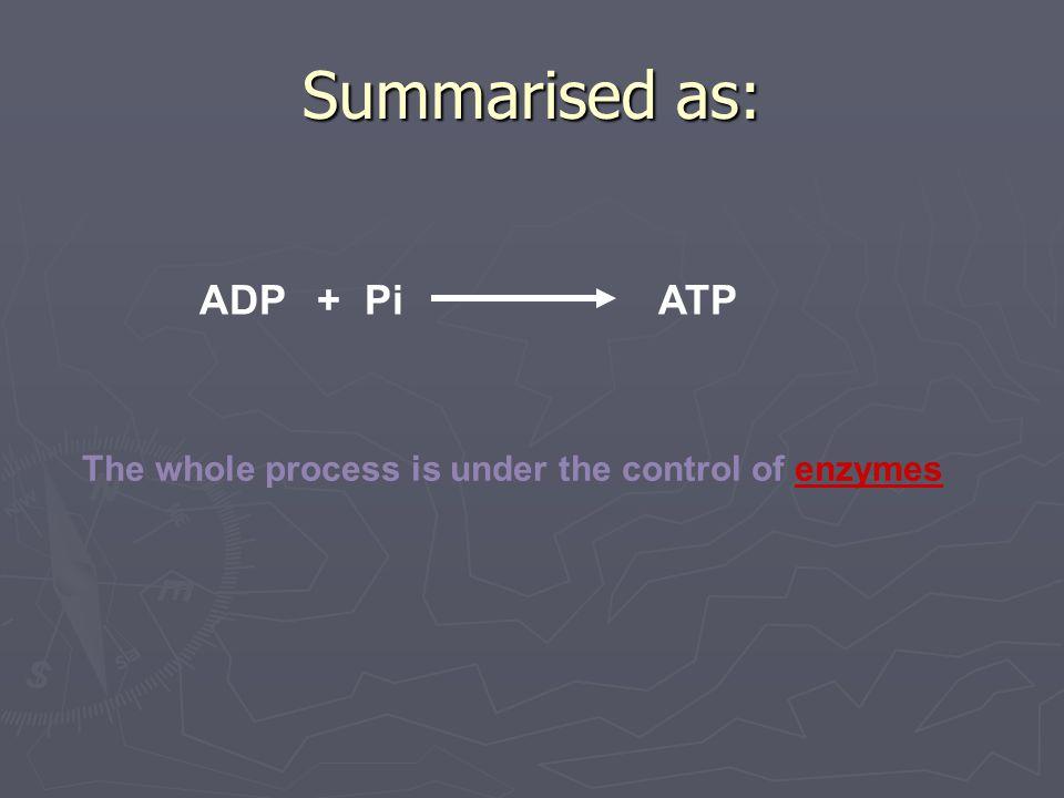 Summarised as: ADP + Pi ATP