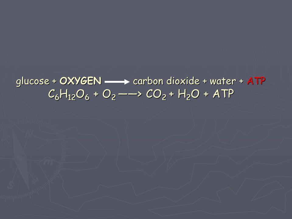 glucose + OXYGEN carbon dioxide + water + ATP C6H12O6 + O2 ――> CO2 + H2O + ATP