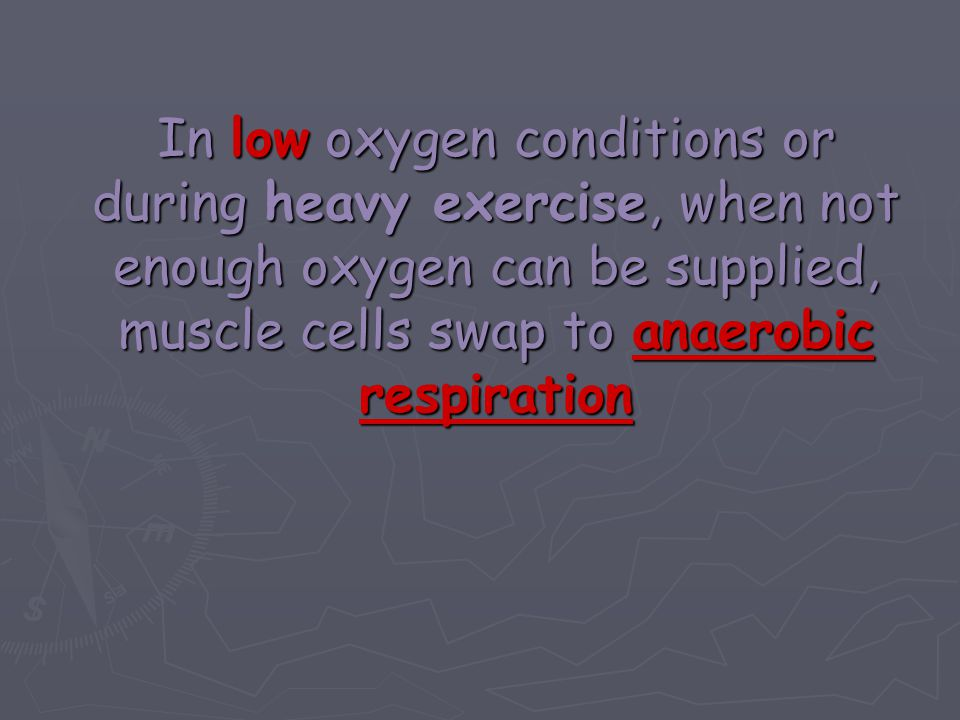 In low oxygen conditions or during heavy exercise, when not enough oxygen can be supplied, muscle cells swap to anaerobic respiration