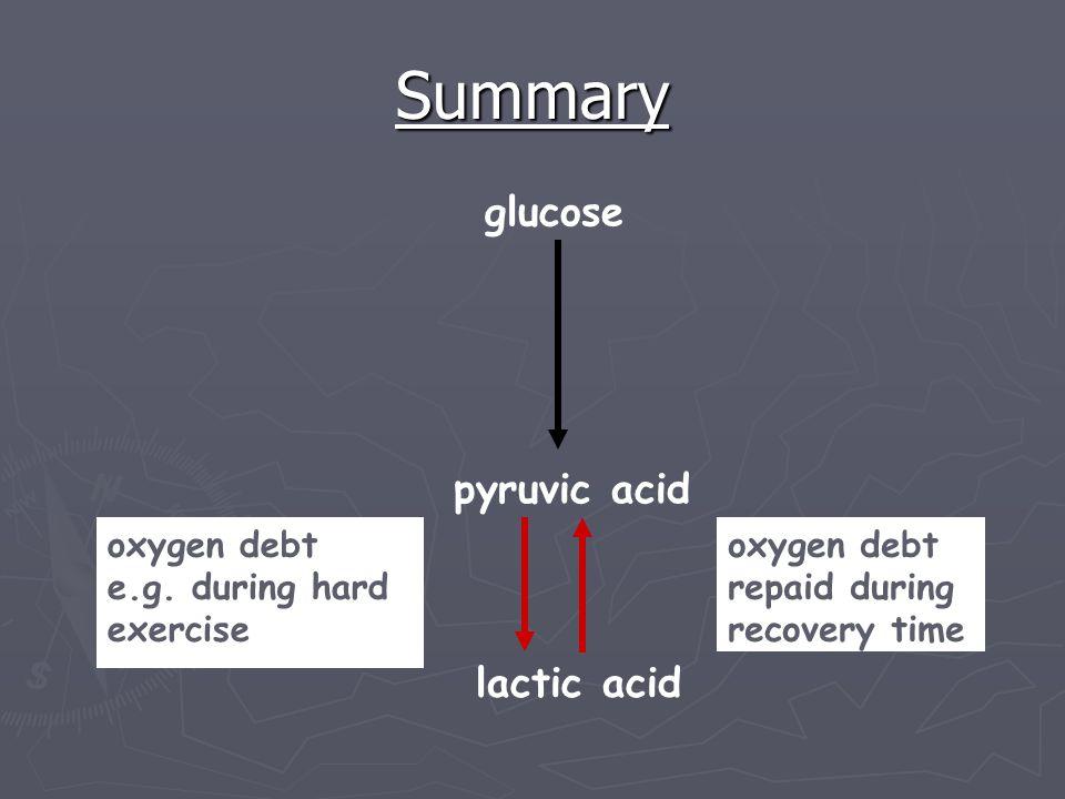 Summary oxygen debt e.g. during hard exercise oxygen debt