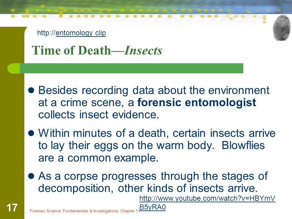 http://entomology clip
