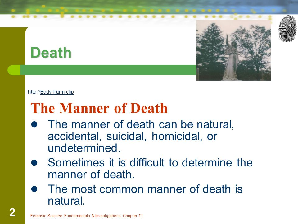 Death The Manner of Death